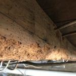 New Paltz Home Inspection1